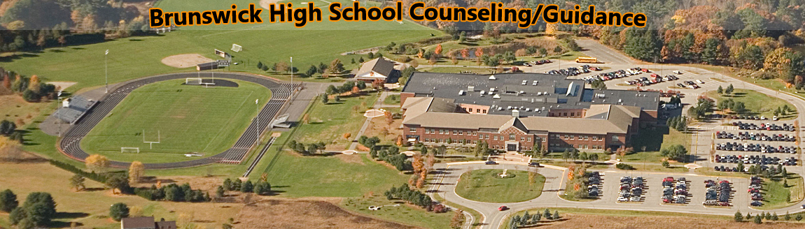 BHS Counseling